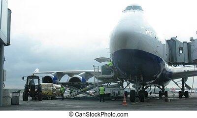 lavorante, di, aeroporto, domodedovo, unlade, aereo,...