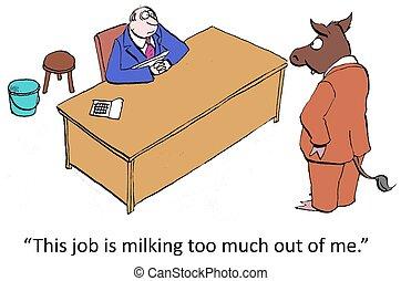 lavoratore, mucca