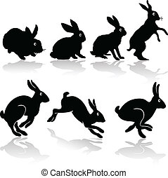 lavoro, silhouette, coniglio