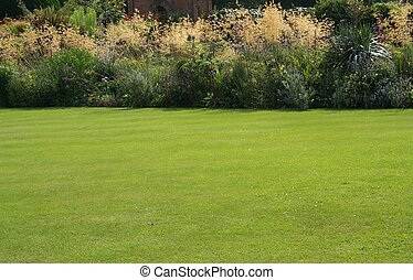 lush green lawn with border including backlit pampas grass