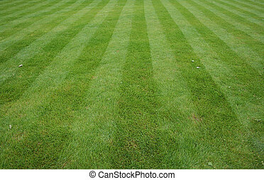 Lawn cut with stripes