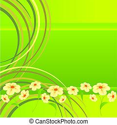 lawn., fleurs