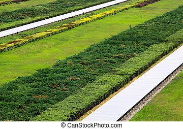 lawn in a garden