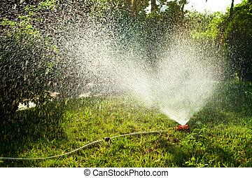 Lawn irrigation - Home garden sprinkler in action