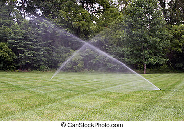 Lawn irrigation system. - Beautiful lawn with sprinklers...