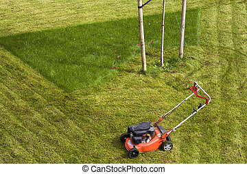 Lawn mower cutting grass on green field in yard. Mowing gardener care work tool