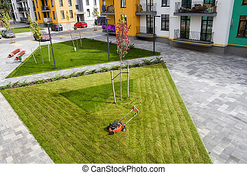 Lawn mower cutting grass on green field in yard near apartment residential building. Mowing gardener care work tool