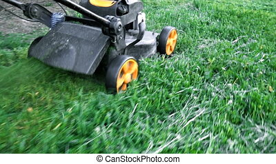 Lawn mower cutting green grass in backyard.