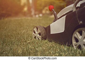 Lawn mower cutting green grass on backyard. Gardening care equipment. Sunny day, close up