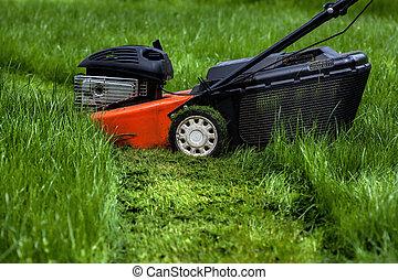 Lawn mower in garden - Mower standing in a garden
