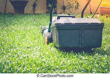 Lawn mower is working on green grass at outdoor garden with sunlight background in the morning.