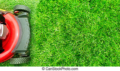 Lawn mower. - Lawn mower cutting green grass in backyard. ...