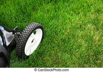 Lawn mower on green lawn.