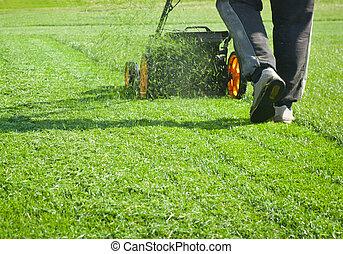 Lawn mower mower, grass, equipment, mowing, gardener, care,...