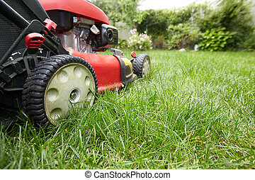 Lawn mower. - Red Lawn mower cutting grass. Gardening ...
