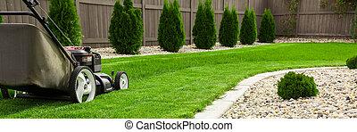 Lawn mower on green lawn