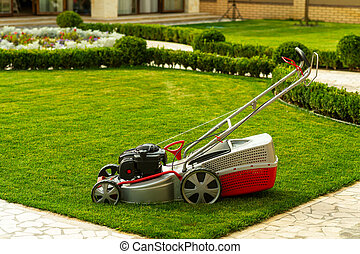 lawn mower with grass