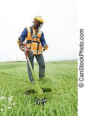 lawn mower worker