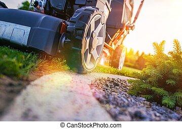 Lawn Mowing Closeup