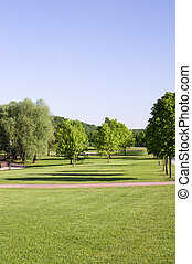 lawn of grass with trees on forest background. nature.