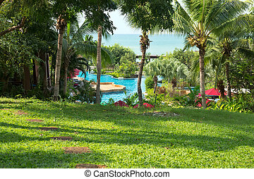 lawn, palm trees, swimming pool, sea