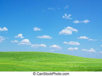 Lawn sky