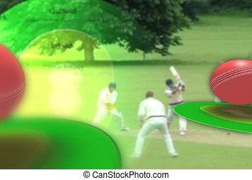 Lawn Sports