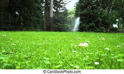 Lawn sprinkler system on garden in grass.