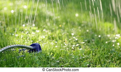 Lawn sprinkler system on garden in grass. Sprinkle sprays water on the green grass in the garden on a background of trees when the sun shines