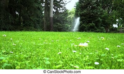 Lawn sprinkler system on garden in grass.