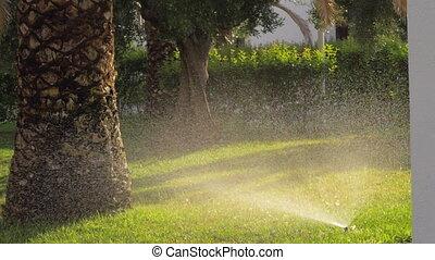 Lawn sprinkler watering grass in the garden