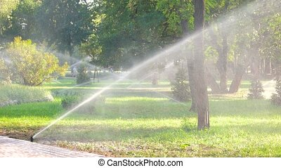 Lawn watering in the city park. Irrigation grass field in...