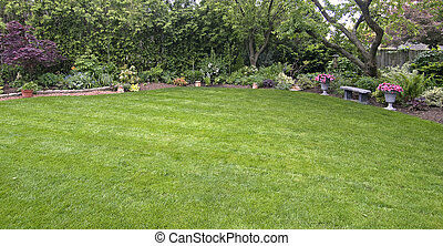 Lawn with tree edge - landscaped lawn surrounded by trees