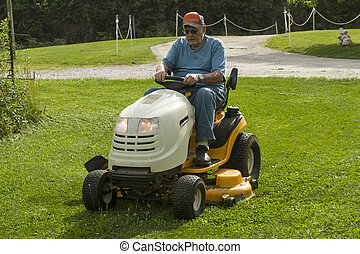 lawnmower, 절단, 시민, 구, 연장자, 풀
