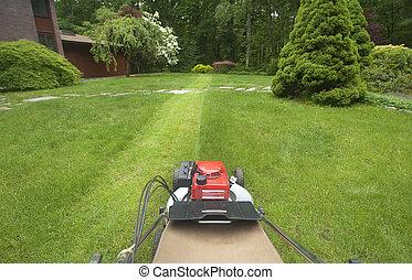 lawnmower, grama cortante
