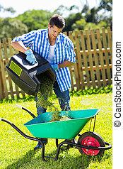 lawnmower, jovem, carrinho de mão, capim, esvaziar, homem