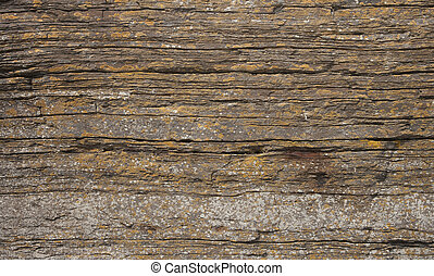 layered rock texture - Cliff face (Scotland, Wick) showing...
