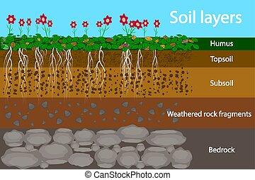 layers., soil., raizes, esquema, capim, textura, diagrama, stones., solo, camada, terra