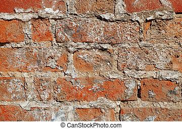 Laying an old brick wall