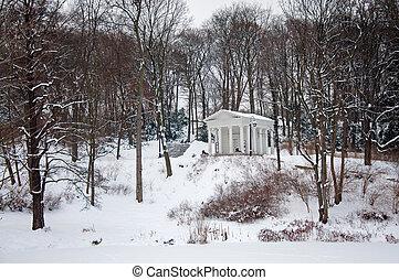 Lazienki Park in winter