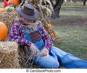 lazy scarecrow naps on the job.