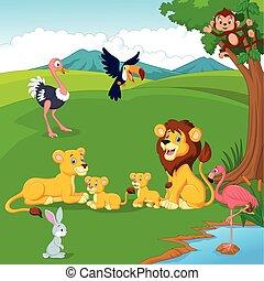 leão, selva, família, caricatura