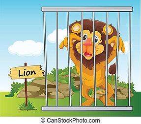 león, jaula