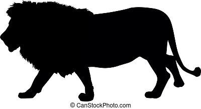 león, silueta