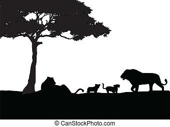 león, silueta, familia