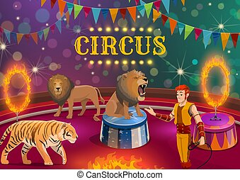 león, y, tigre, domador, amaestrado, en, circo, arena