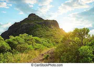 Le Morne Brabant mountain in Mauritius island. - Le Morne ...