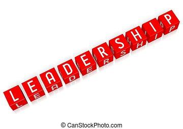 Leadership - 3D cube word