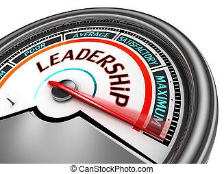 Leadership conceptual meter