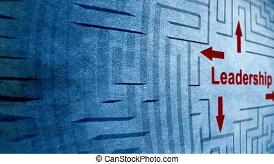 Leadership maze concept